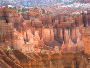 Bryce Canyon & Trees 2009-05-17------09-32---16--[-1.0]+[0.33]